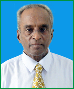 Dr. R. Mahadevan <br> Associate Director